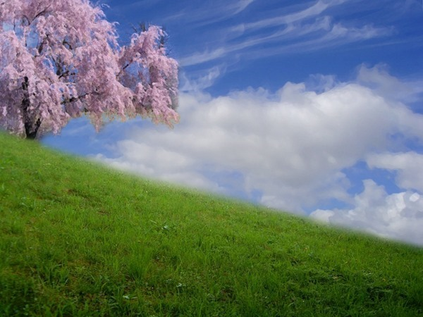 Backgrounds Scenic A (12)