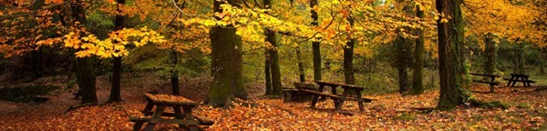 Autumn October Headers (15)